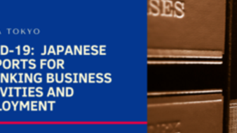 Covid-19:  Japanese supports for shrinking business activities and employment